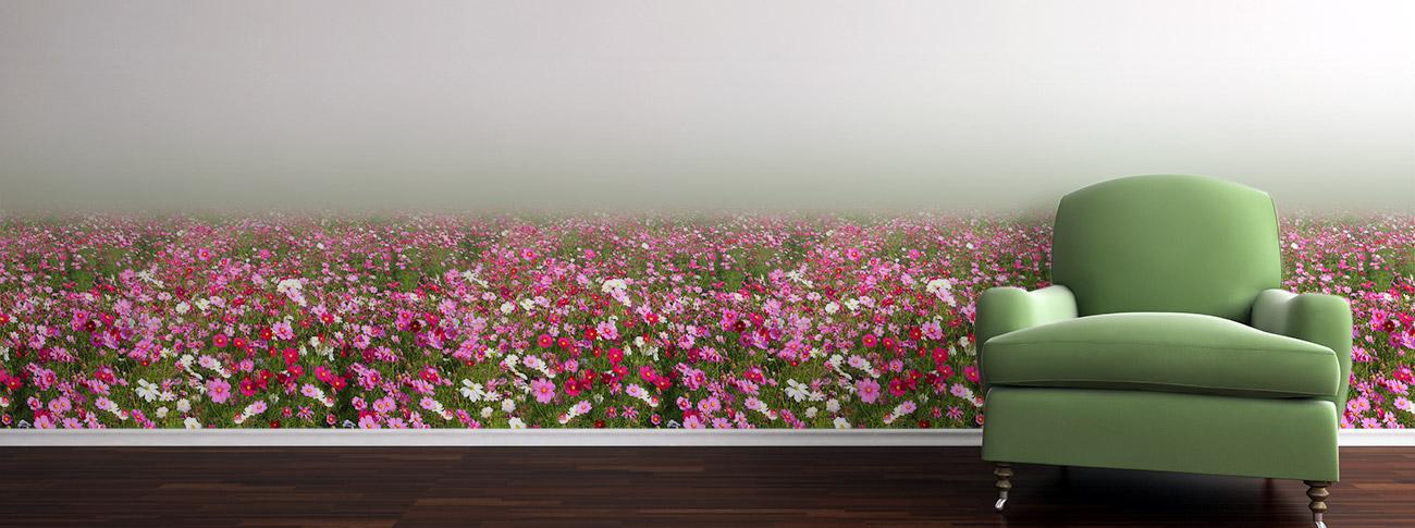 Cosmos floral mural wallpaper